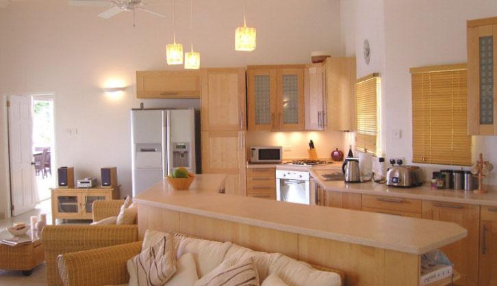 комната-студия с кухней